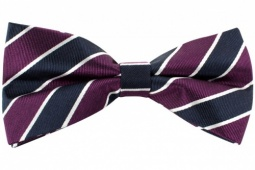 Purple Navy and White Striped Pre-Tied Silk Bow Tie